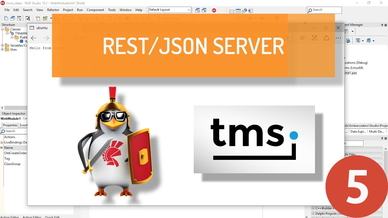 Creating a REST Server on Apache Linux using Delphi and TMS XData - Part 5:  TXData/Aurelius server