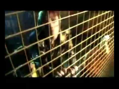 Клип Отпетые Мошенники - Я Учусь Танцевать