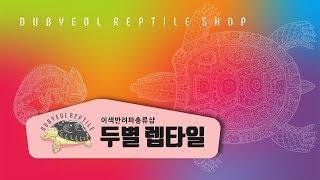 파충류 용품 택배 개봉기 9탄(feat.쇼핑중독)