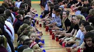 Cup Song Collège Saint-Bernard - Drummondville