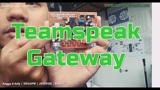 Teamspeak Interface Gateway