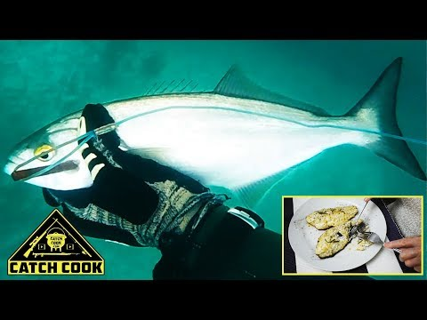 Spearfishing Shad/Bluefish [Catch Clean Cook] South Africa, East London