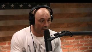Joe Rogan - LSD on a mountain - psychedelic experience