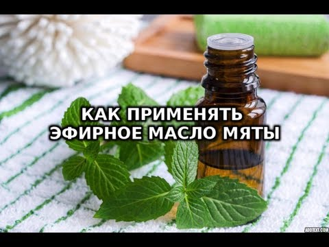 Применение эфирного масла мяты, все свойства, для волос и кожи лица