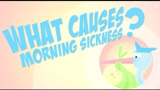 What causes morning sickness? - Reactions