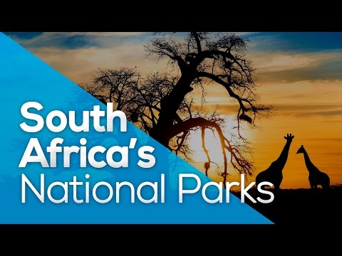 SOUTH AFRICA´S NATIONAL PARKS / WHYGO / TRAVEL / WILDLIFE / TOURS