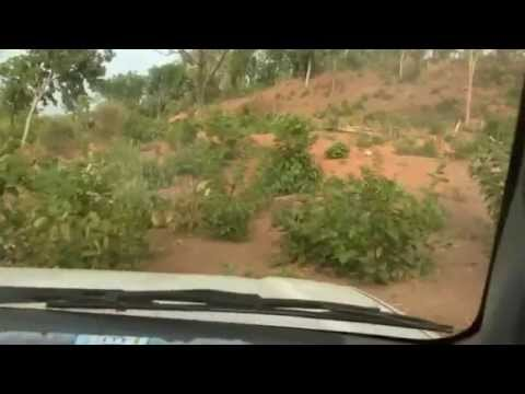 Mali Travel Adventures 2010
