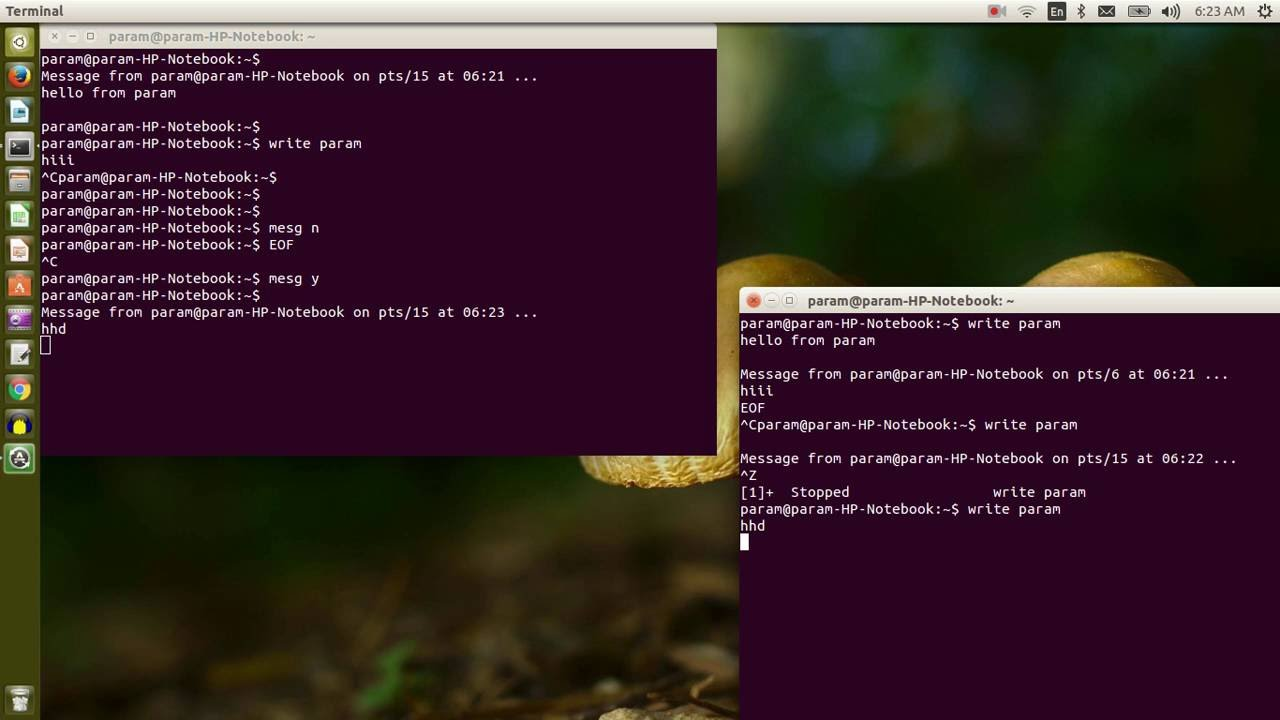Sending message to other user in linux