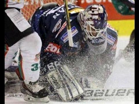 eishockey net oberliga west