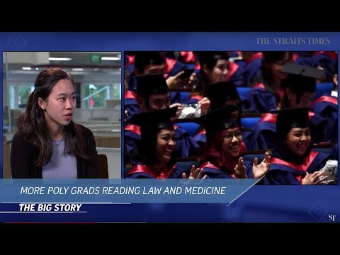 THE BIG STORY: More poly grads are studying law and medicine