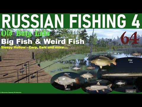 RUSSIAN FISHING 4 - 64 - Big Fish, Weird Fish. SLEEPY HOLLOW Grassies, Eel & Lots More...