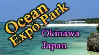 Japan Trip:Dolphins, Space, History and More!! Ocean Expo Park, Okinawa Main Island, Okinawa15