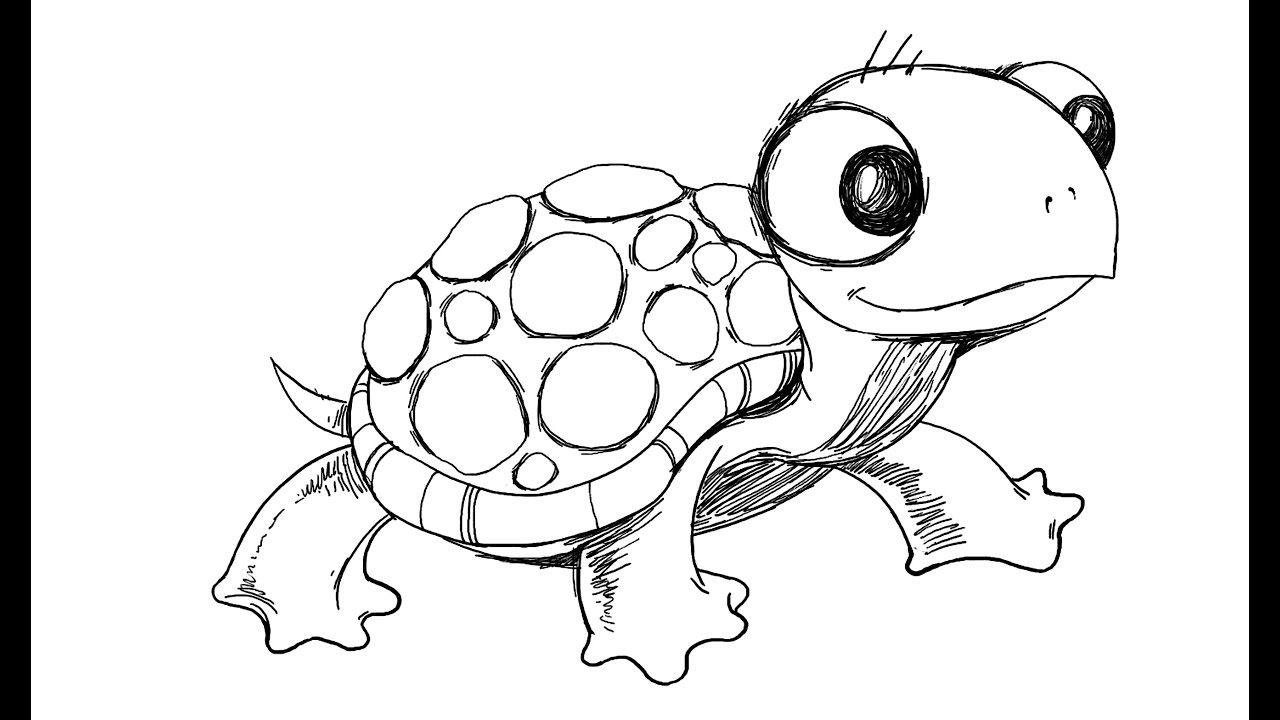 Uncategorized Turtle Drawings how to draw cartoon turtle youtube turtle