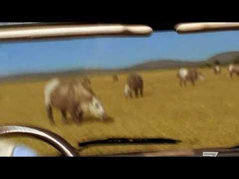 Prehistoric Park sigla 4 puntata