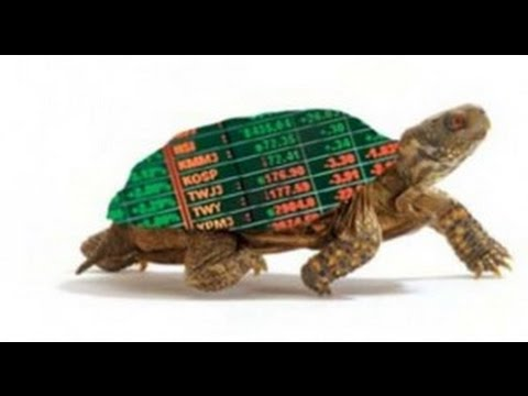 Does the turtle trading system work