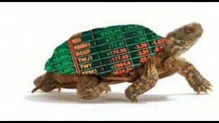 Does the Turtle Trading System still Work