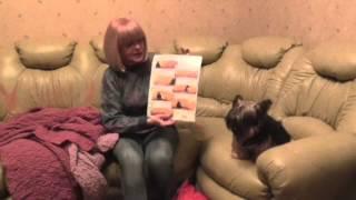 Чехол на угловой диван(В этом видео автор демонстрирует свежую интернет-покупку - чехол для углового дивана от итальянской компании., 2014-02-23T23:46:32.000Z)