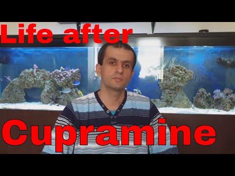 What Happens If You Use Cupramine In Your Reef Aquarium
