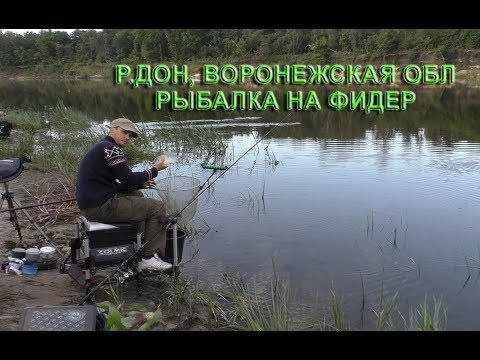 Поездка на р.Дон, г.Лиски, Воронежская обл. Рыбалка фидер.