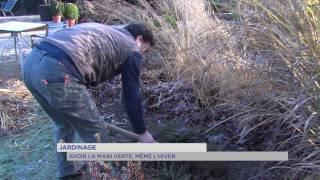 Jardinage : avoir la main verte, même l'hiver