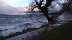 Sturmtief Sabine, 10. Februar 2020, Seeallee Sempach