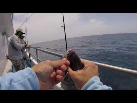 South Florida Fishing - 200+ Feet Deep Reef Fishing with Kelley Fishing Fleet