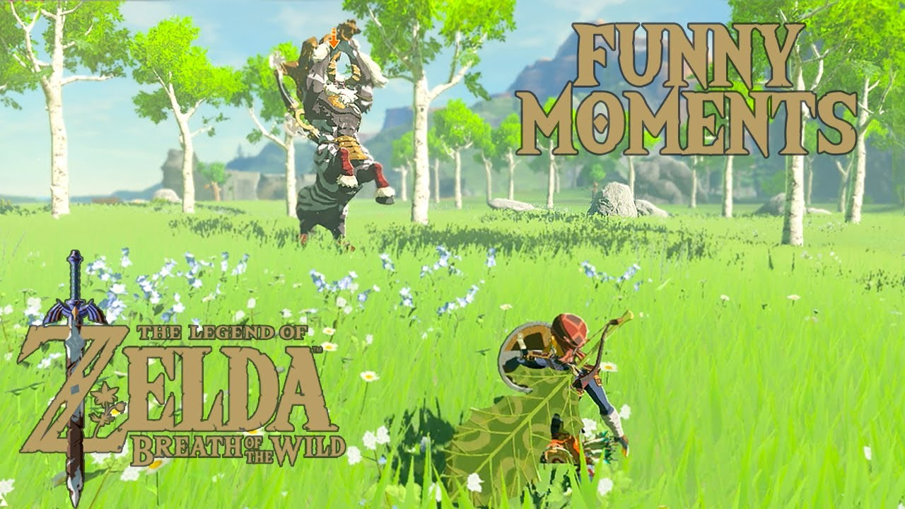Master Mode Funny Moments The Legend Of Zelda Breath Of The Wild