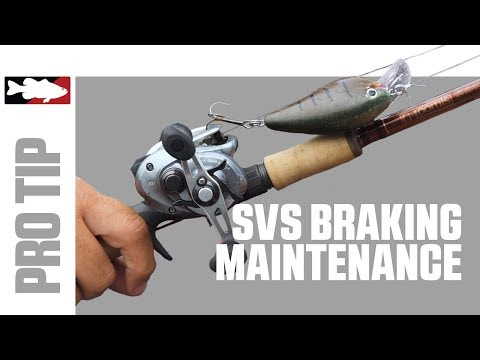 Pro's Pointers - Shimano Reel Care Maintenance With Dan Thorburn