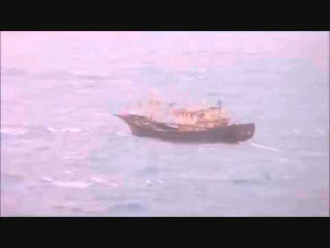 Lorenzo Shipping