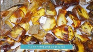 [엠버베이비] 호박이야기 (호박목걸이, 호박팔찌, 젖니…