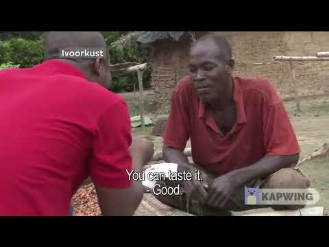 Cocoa Farmers Try Chocolate for the First Time