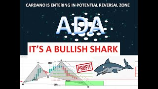 Cardano Is Forming Last Leg Of Shark    ADA USD Is Moving To Potential Reversal Zone