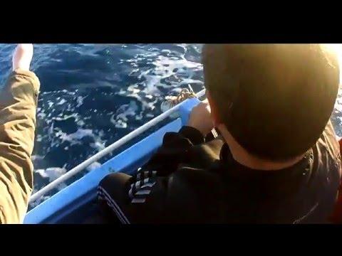 Extended Version 720p, 645kms For Fishing - Asis Fishermen 2015, 2013 Güvercinlik / Bodrum / Turkey