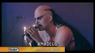 Umbra Et Imago -- Rock Me Amadeus - (15/16) - [Die Welt Brennt Live Concert DVD]