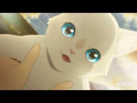 本予告『泣きたい私は猫をかぶる』【2020年6月18日(木)Netflixより全世界独占配信スタート!】