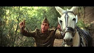 'La mula' - Tráiler (HD)