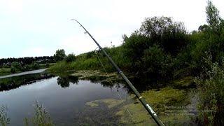 Проснулся утром и поехал на пруд!Рыбалка на спиннинг.