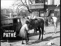 women 39 s 656 mile horse ride 1928