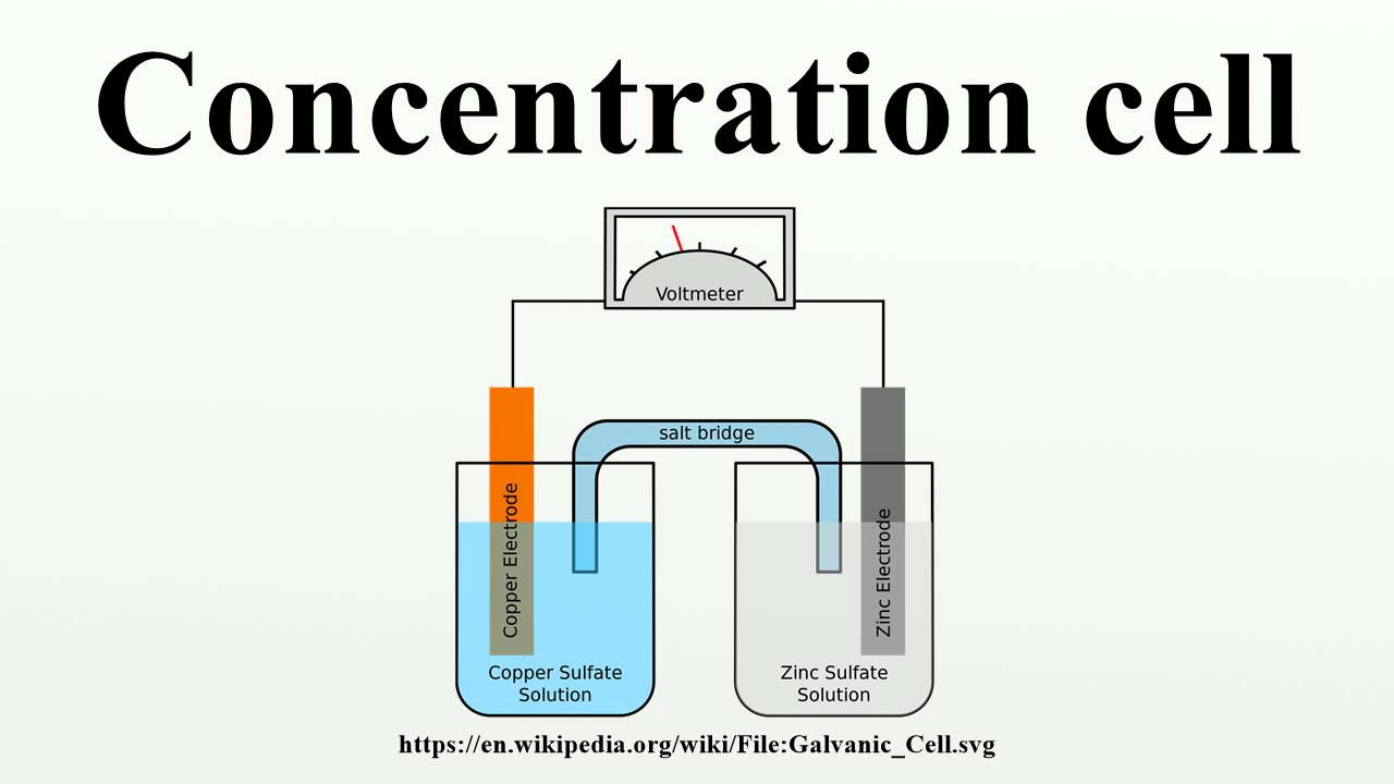 medium resolution of concentration cell diagram of concentration cell