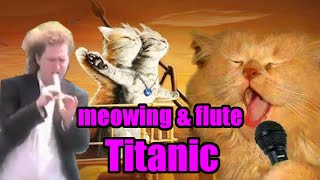 Squeal Cat meowing Titanic Theme (ft. Emotional Flute Guy)