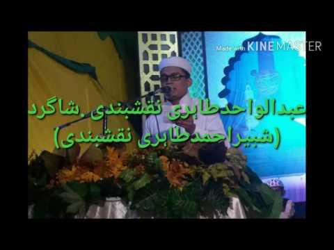 Abdul Wahid Tahiri Naqshbandi Naat (Jo Mere Nabi Ka Karam)