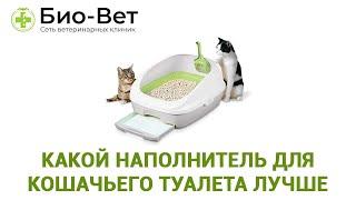 Какой наполнитель для кошачьего туалета лучше. Ветеринарная клиника Био-Вет