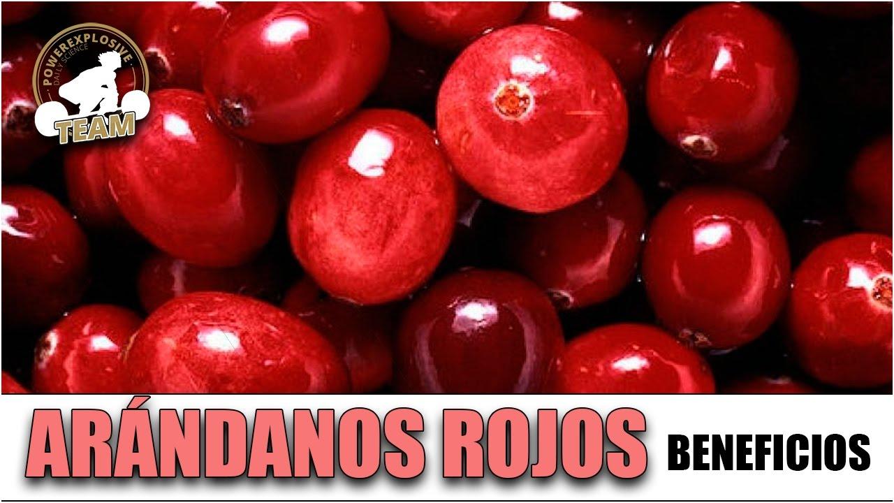 beneficios de los arándanos rojos secos