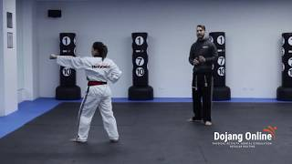 Taegeuk 1 - Yellow Belt 1 (9th Gup)