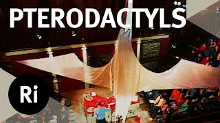 Becoming A Pterodactyl - Christmas Lectures with Simon Conway Morris