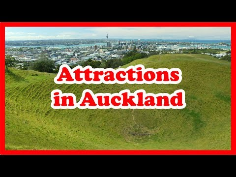 5 Must-Visit Attractions in Auckland | New Zealand Travel Guide