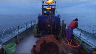 愛知県の小型底びき網漁業を360°VRで体験しよう!
