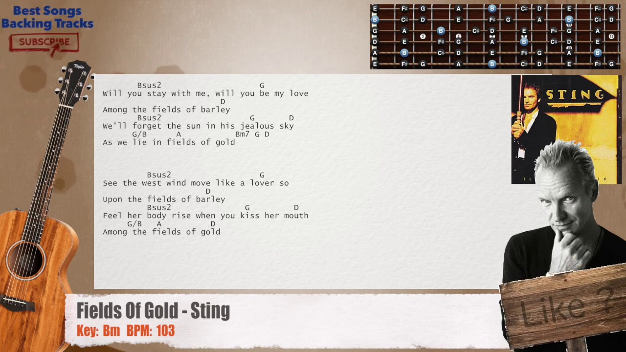 Fields Of Gold Sting Guitar Backing Track With Chords And Lyrics