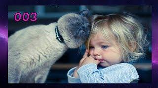 ПОДБОРКА СМЕШНЫХ ВИДЕО ДЕТЕЙ С КОТАМИ 003 Веселые коты и дети