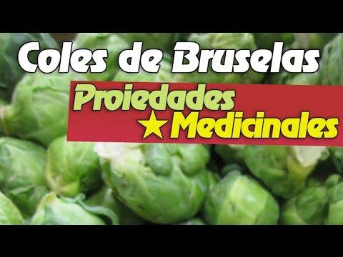 Las Coles De Bruselas y Sus Propiedades Medicinales